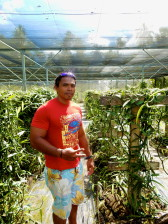 Aro at the vanilla farm